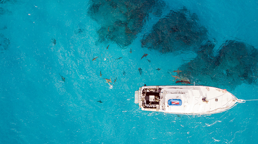 Medium sized boat in ocean surrounded by sharks