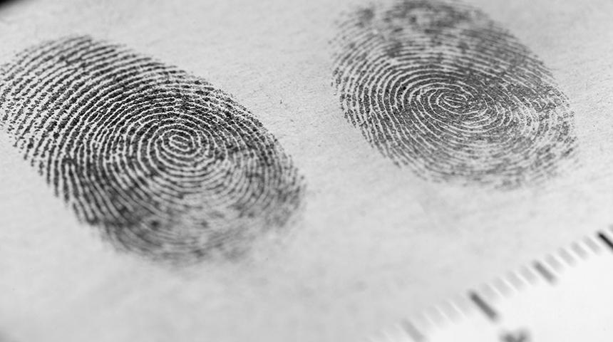 fingerprints on paper in investigation
