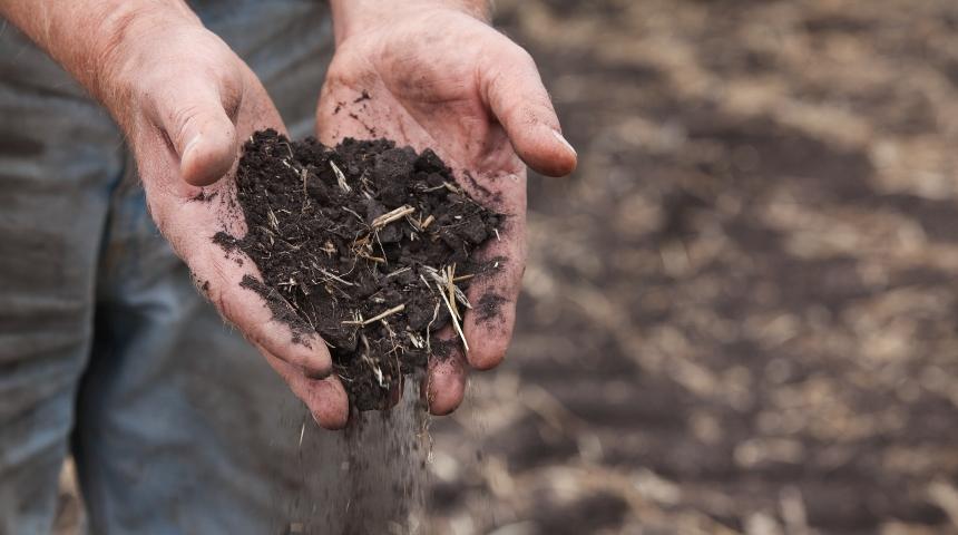 Soil falling from farmers hands