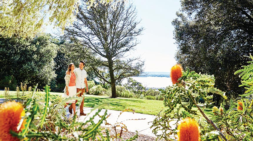 A male and female walking together in Kings Park with the river in the background and banksias in the foreground