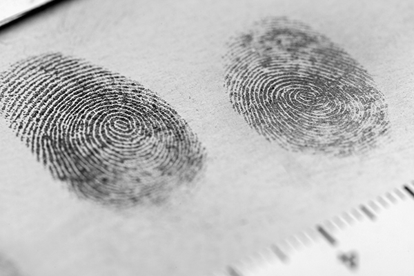 fingerprints on paper in investigation