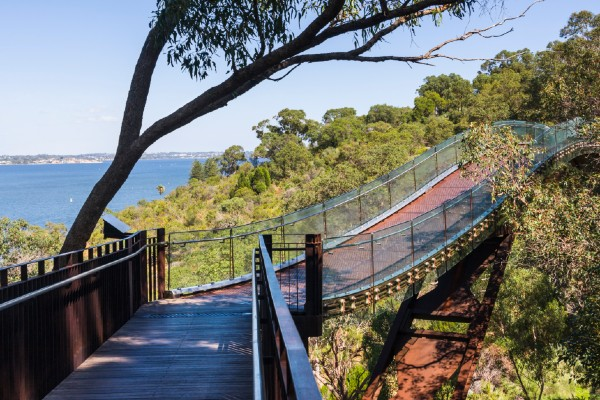 Picture of walking trail in Kings Park